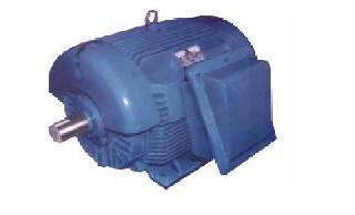SPDP Electric Motors