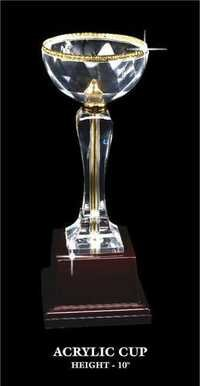 EWI ACRYLIC CUP.