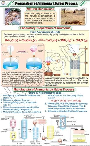 Prep. of Ammonia & Haber Process Chart