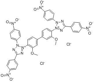 Tetrazolium Blue BT