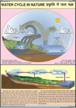 Nature Water Cycle Chart