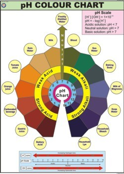 pH Scale Color Chart