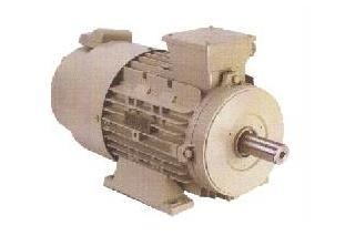 3 Phase Inverter Duty Motors