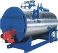 Oil/ Gas Fired IBR Steam Boiler
