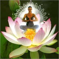 Yoga & Meditation tours in India