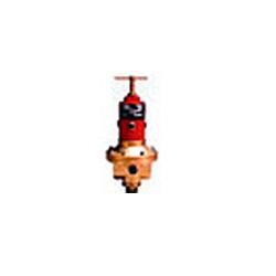 Adjustable Pressure Regulator