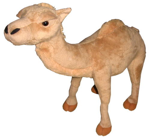 Stuffed Camel
