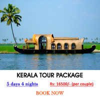Kerala Tour Services