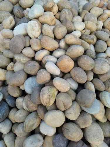 Wholesale Demanded Big Size Natural River Pebbles and Cobbles Stone