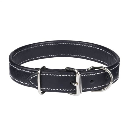 Black Dog Leashes