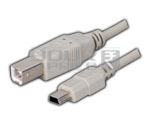 USB B Male to Mini USB 5P Male Cord - 2 Meter.