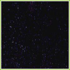 Galaxy Granite Tiles
