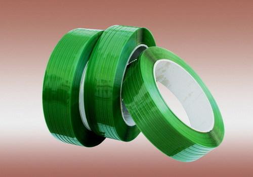 Pet Light Green Strap