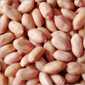Fresh Peanuts