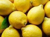 Lemon PG Extract