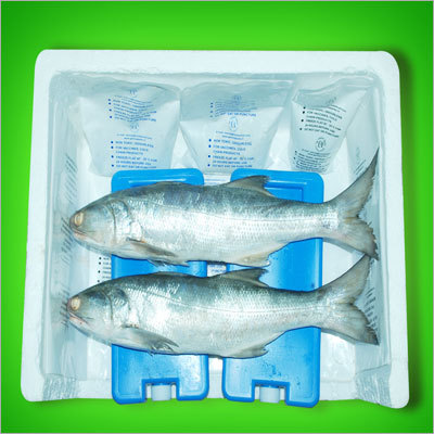 Ice Pack for Fish