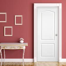 Molded Skin Door