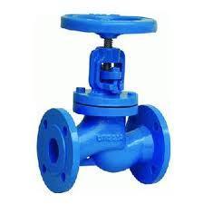 globe valve ci