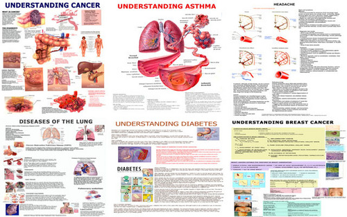 Diseases Charts