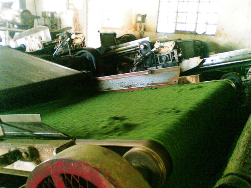 CTC TEA PROCESSING MACHINE