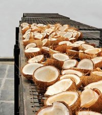 Coconut Dryer Machine