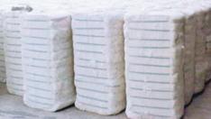 Cut Size Pet Strap For Cotton Bales
