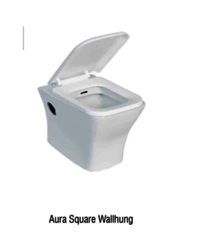 square wall hung toilet
