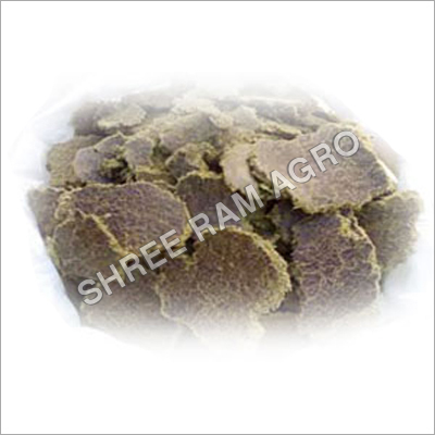 Cotton seed Oil Cake