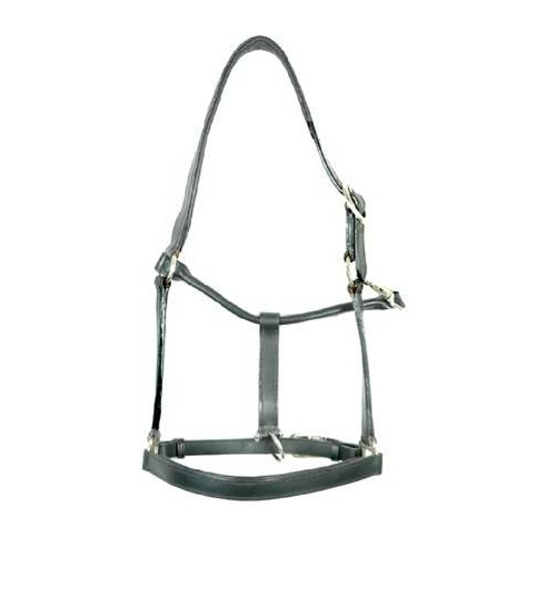 Horse Leather Halters