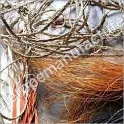 Sabai Grass Fibers