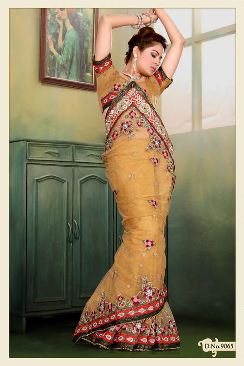 Light Orange Net Saree with Blouse