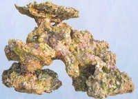 Aquapro coral TZ-H 503