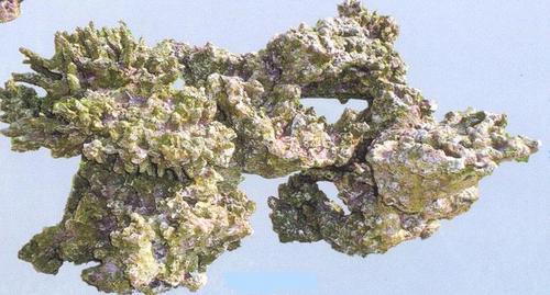 Aquapro coral TZ-H 501