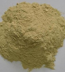 Healthy Dudhi Powder