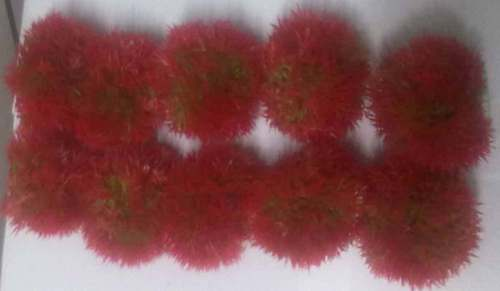 CH GRASS BALLS , RED COLOR, 10 IN 1