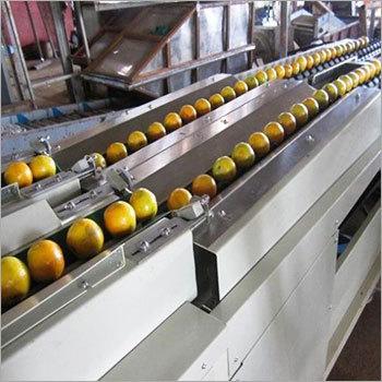 Fruit Grading Equipment