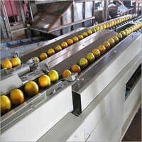 Fruit Grading Equipment