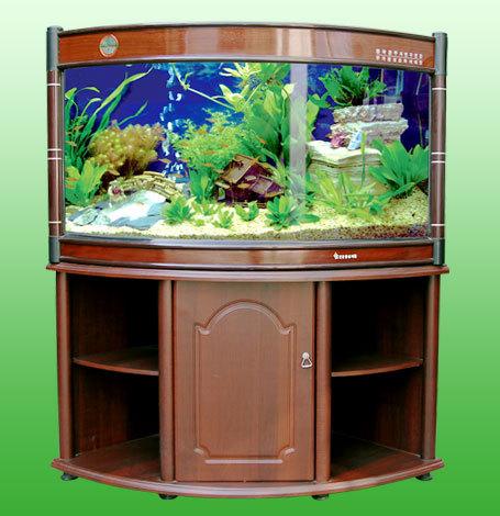 Mj R9 1000 Sj Aquarium Fish Aquarium Home H 16 17 Vikas Marg