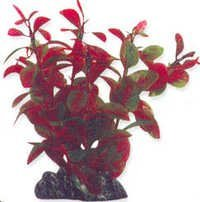 Aqua One Plant  24186,24196