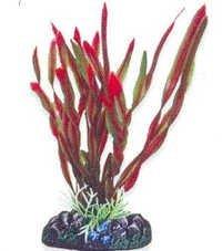 Aqua One  Plant  24191