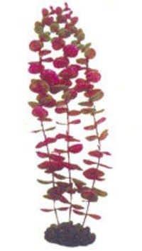 Aqua One  Plant  28047,28055
