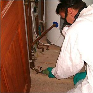 Cockroach Control Herbal Pesticides