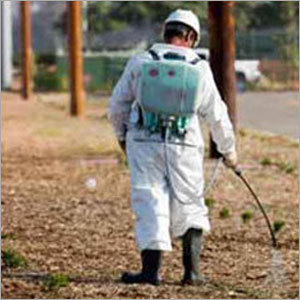 Rodent Control Chemical Spray