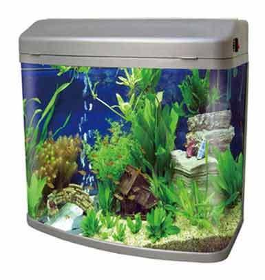 Mj R3 480 Aquarium Fish Aquarium Home H 16 17 Vikas Marg Laxmi