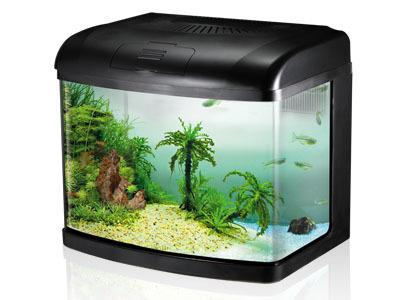 Sobo Aquarium T 40f Fish Aquarium Home H 16 17 Vikas Marg