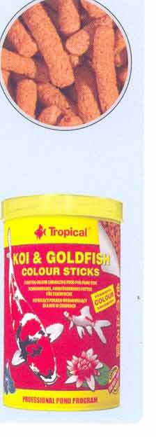 TP KOI & GOLD COLOUR