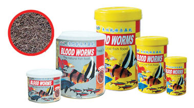 Kw Aim Blood Worms