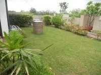 Terrace Garden Accessories