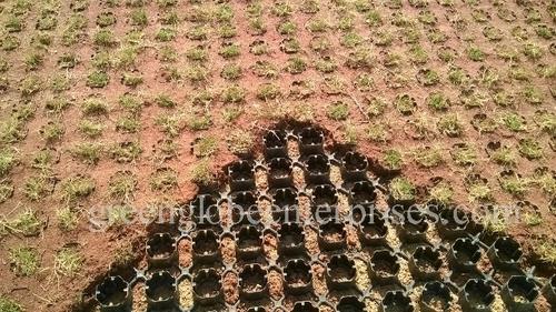 Turf Grass Pavers