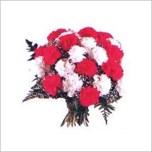 Carnations Flowers
